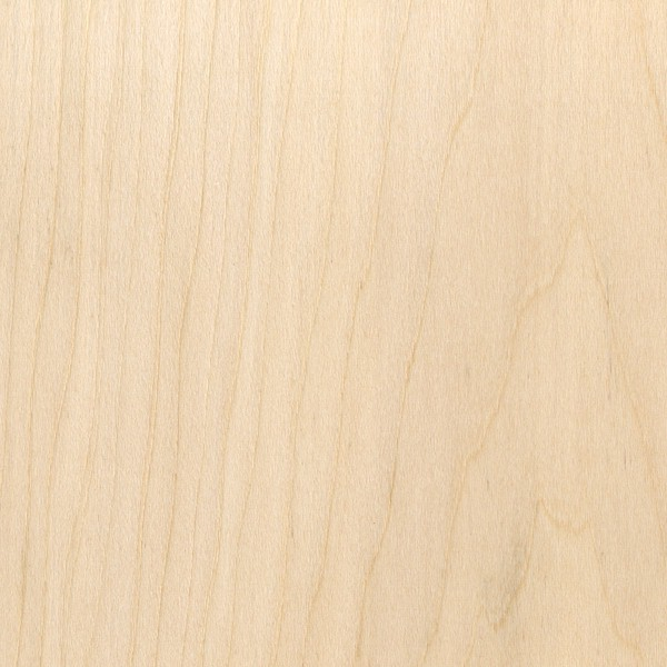 Basswood Sample